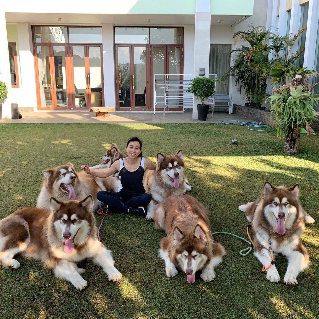 10 dấu hiệu cho thấy bạn yêu chó