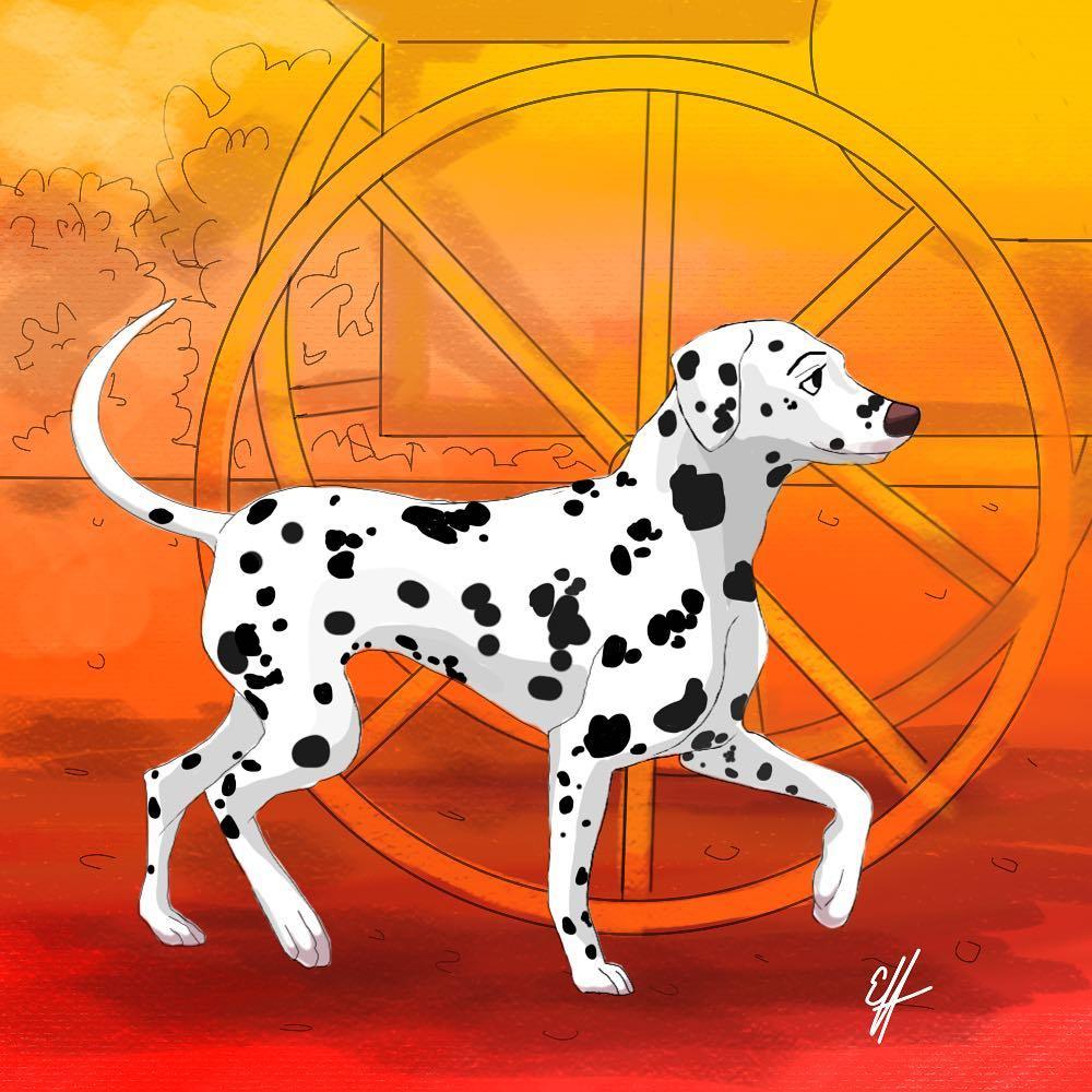 Đặc điểm tính cách chó Đốm