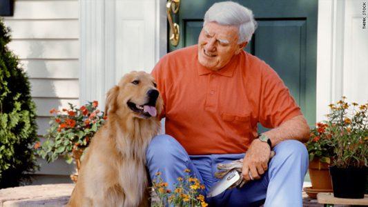 Benh roi loan nhan thuc Alzheimer o cho gia 533x300 1
