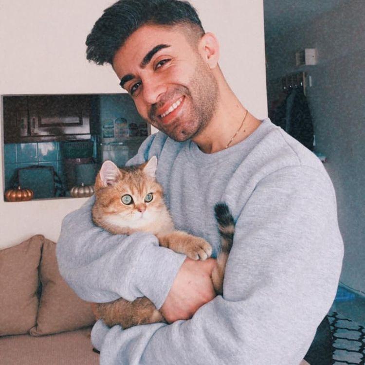 Cách để trở thành một người chủ sở hữu mèo tuyệt vời