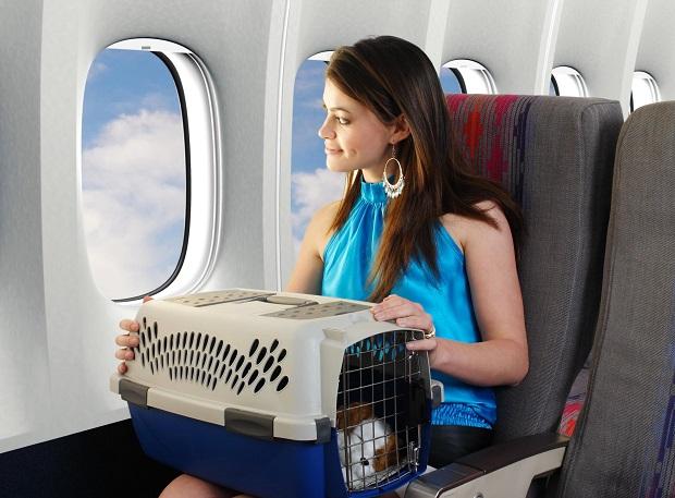mang thu cung len may bay vietnam airlines 29 9 2020 1