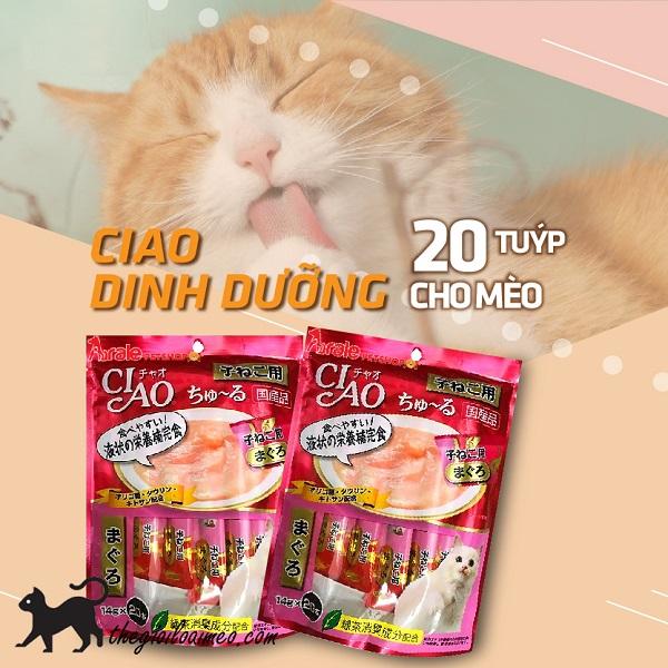 Pate Ciao cho mèo là gì? Pate Ciao nào tốt nhất cho mèo?
