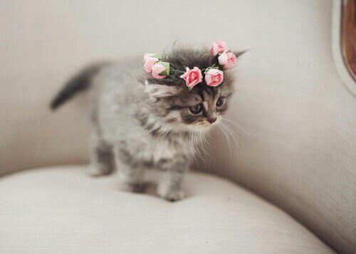 0407 flower4