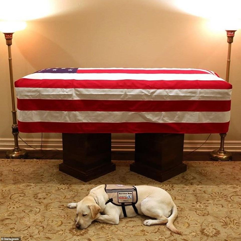 Chú chó Sully buồn bã trước quan tài cố Tổng thống George H.W