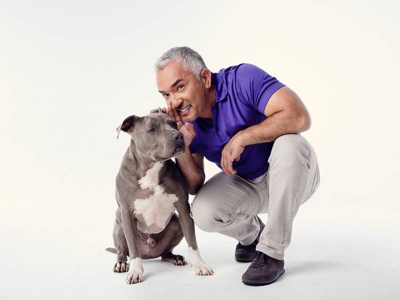 Huấn luyên chó nổi tiếng thế giới Cesar Millan