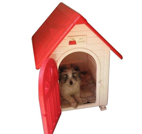 1104 372 1 372 nha nhua pet house