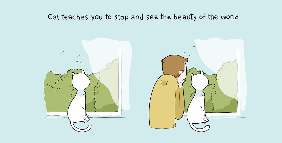 10 lợi ích của việc nuôi mèo