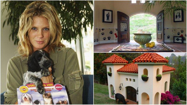 Top 10 ngôi nhà cho chó sang trọng hàng đầu