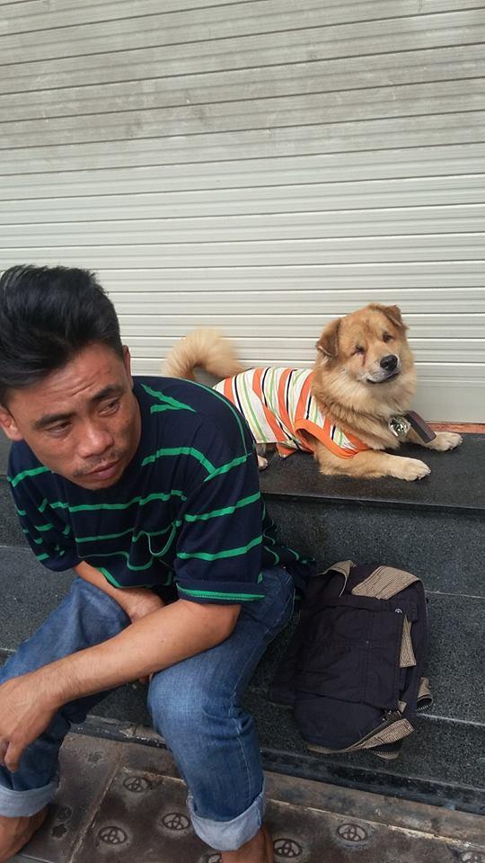Tình bạn cảm động của chú đánh giầy và chú chó nhỏ