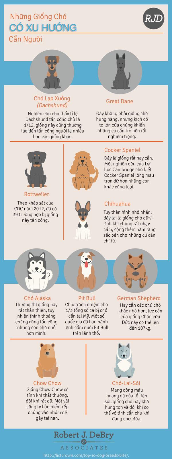 Các Giống Chó Có Xu Hướng Cắn Người