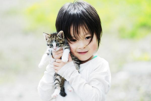 Cách ra mắt em bé với mèo cưng