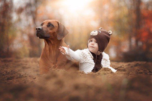 dog and child grande