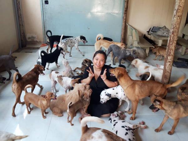 Vật nuôi bị bỏ rơi tại trung tâm cứu hộ động vật