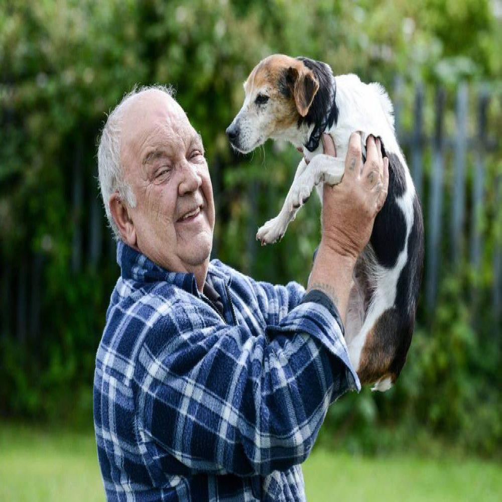 Chú chó bị thất lạc trong 7 năm đã tìm thấy chủ nhân của nó